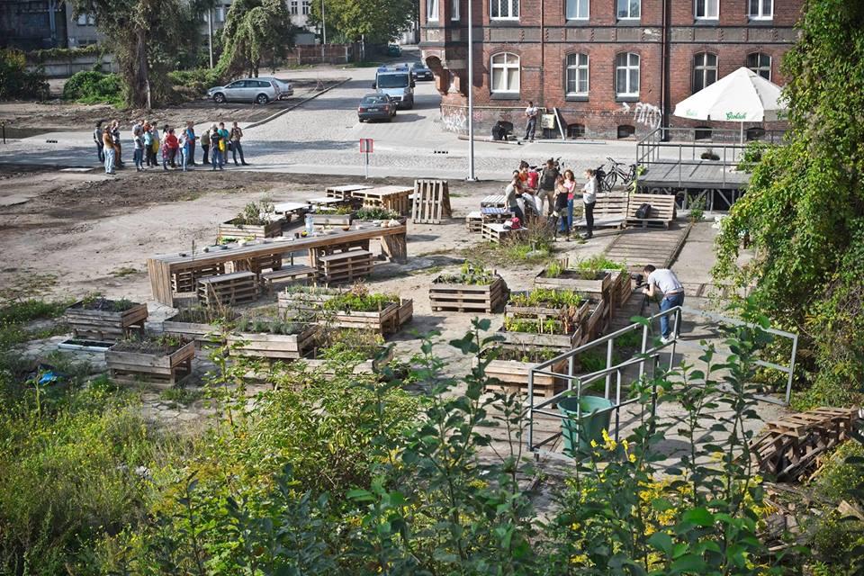Ogród Alternativa, 2015